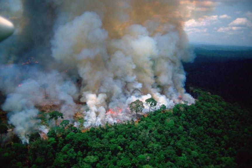 Hace dos semanas que arde el Amazonas