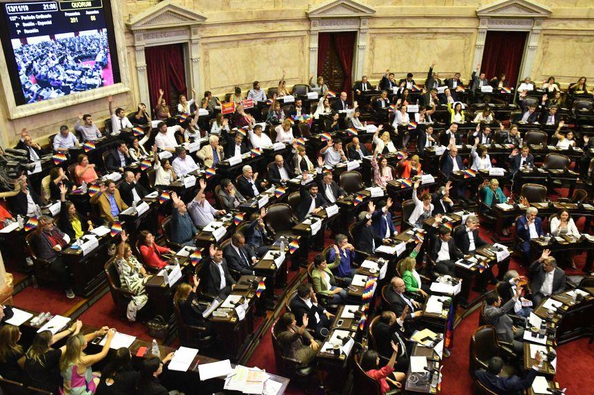 El Congreso repudió el Golpe de Estado en Bolivia
