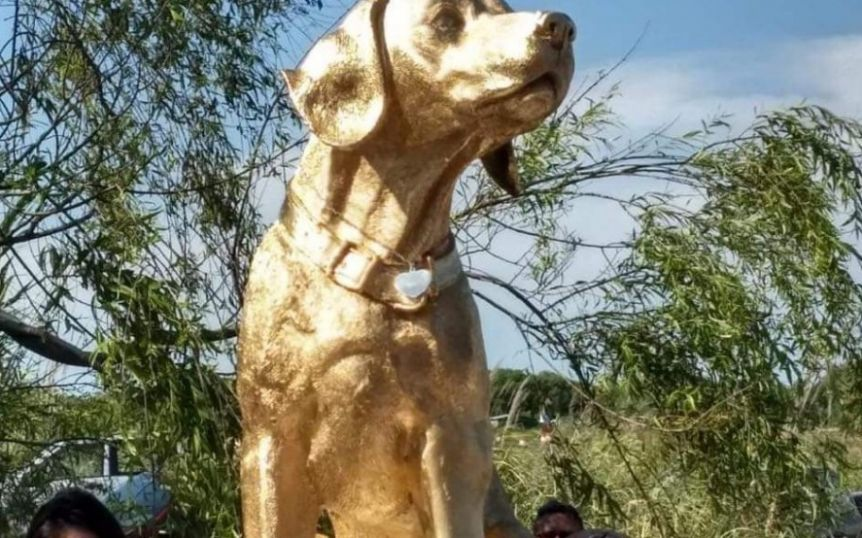 Rubio, el perro asesinado en Mar del Tuyú, ya tiene su monumento